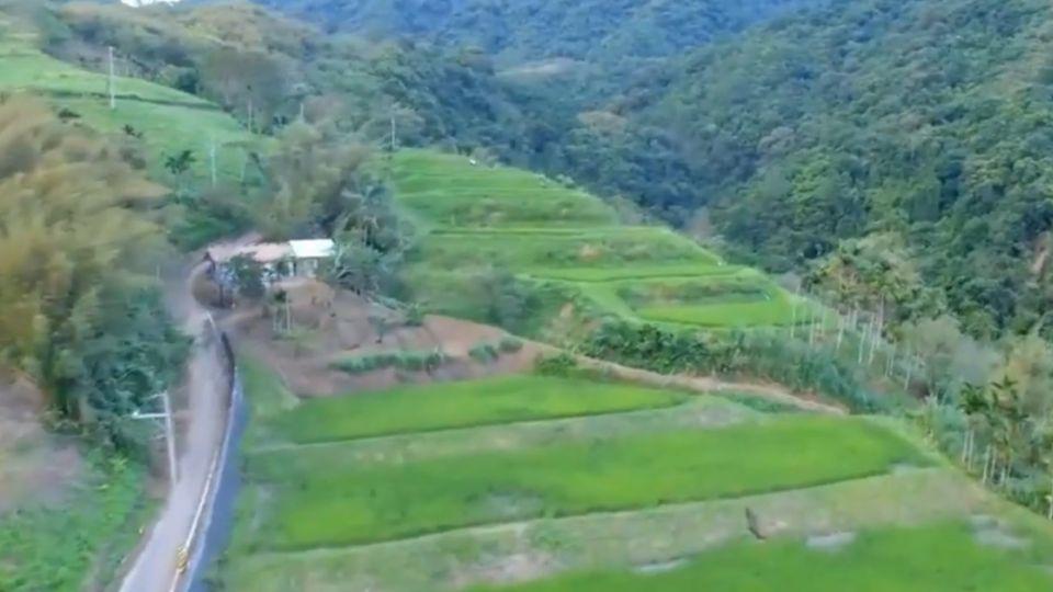 花蓮「天空梯田」 獲選全球百大綠色旅遊地