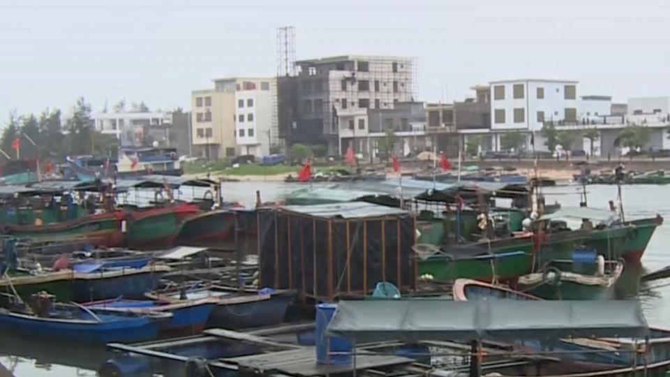 環保禁撈硨磲貝 潭門鎮靠海「吃」海