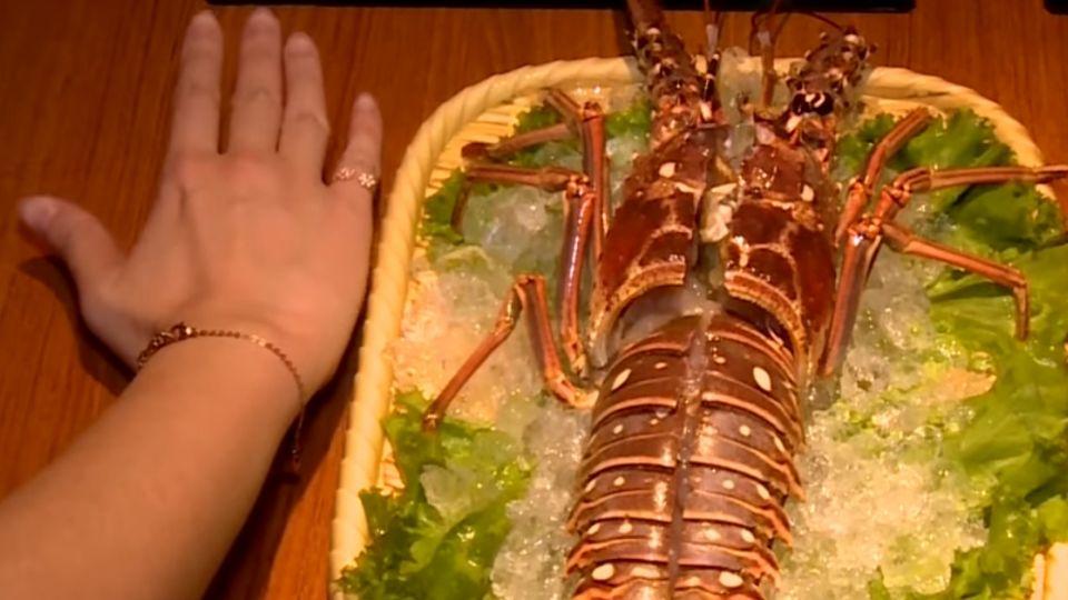 超過兩個手掌大龍蝦 12種蔬菜水果熬湯底