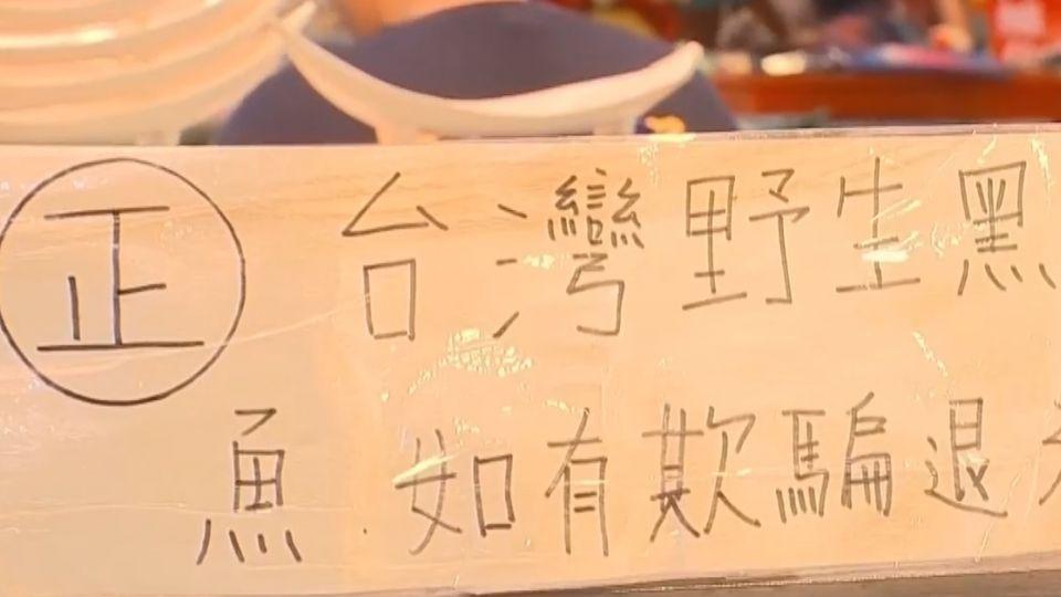「圈養」黑鮪拉低品質?東港漁會:專賣區限野生