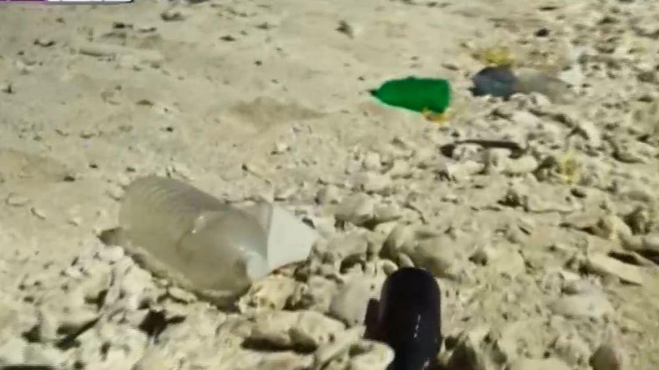 慘遭塑膠污染 中途島夢幻美景大崩壞