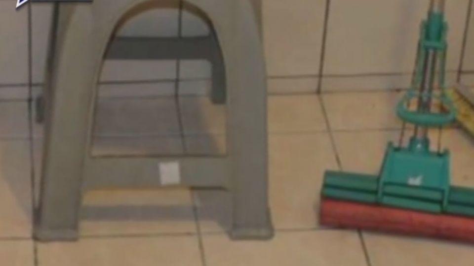 嬰關貓籠養虐死剪屍 母與同居人遭判20年徒刑