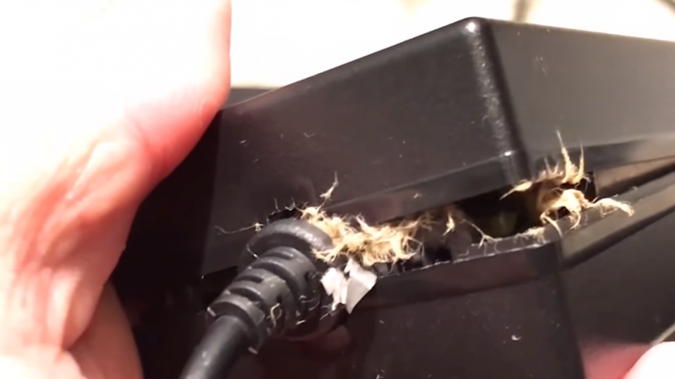 FB買喇叭變電器驚爆退費難 怒「炸得很震撼」