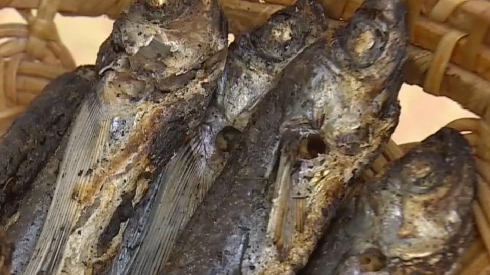 鹿兒島「柴魚」變湯包 輕鬆在家作日式料理