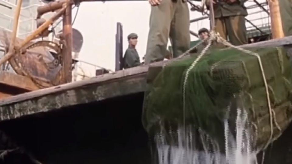 毒品藏船底包裝成太陽餅禮盒 運毒怪招多