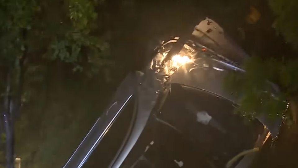離奇!車撞破圍欄 連人帶車栽入秋紅谷公園