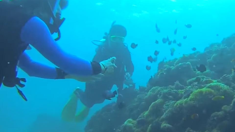 墾丁潛水被丟包 游3小時上岸撿回一命