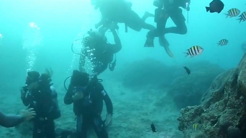 扯! 潛水客海上遭教練丟包 游三小時上岸