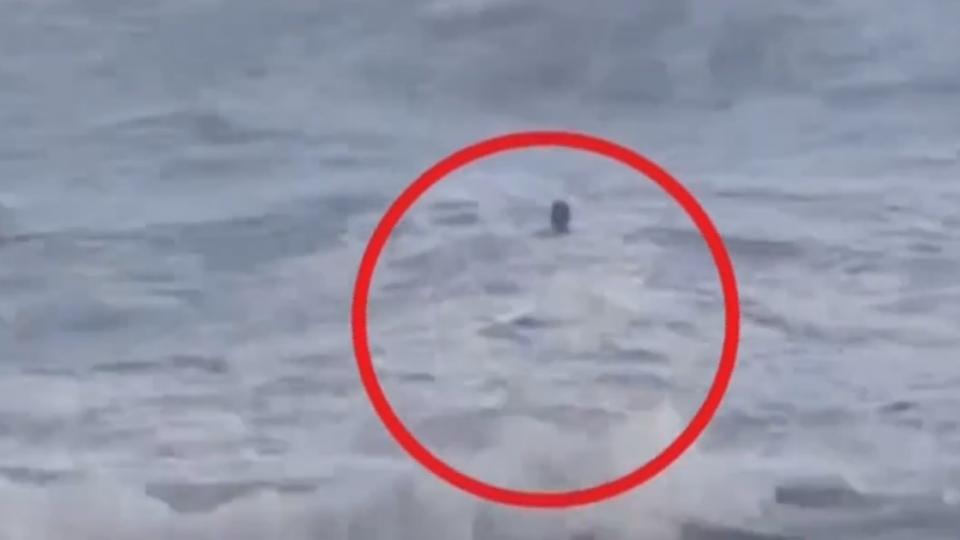 腰包掉入海 阿伯為撿拾險遭巨浪吞噬