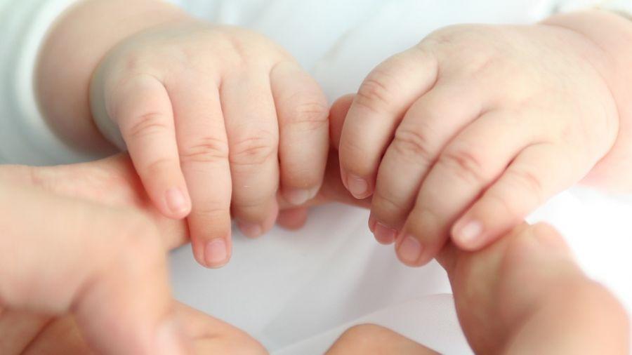 他抱「嬰兒」回家被姊狂甩巴掌 老師公布「驗屍報告」笑翻網友