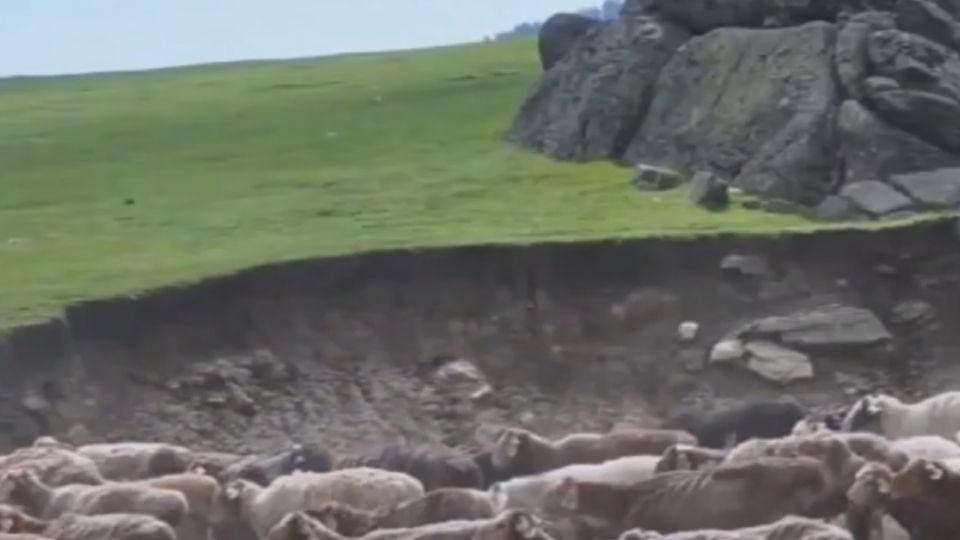 砰!19人北疆旅遊 巴士滑邊坡 1人左肩骨折