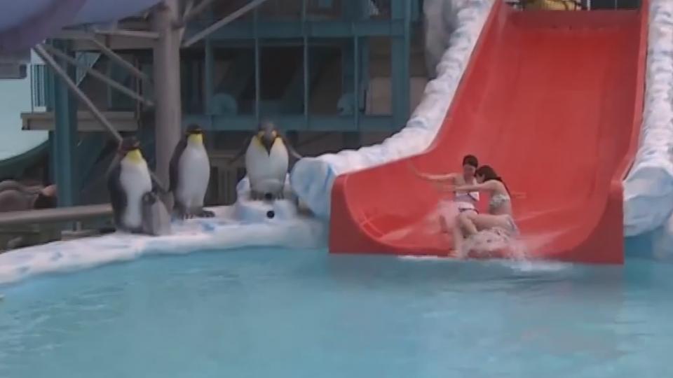 搶發「熱」財 樂園業者推6°C滑梯消暑