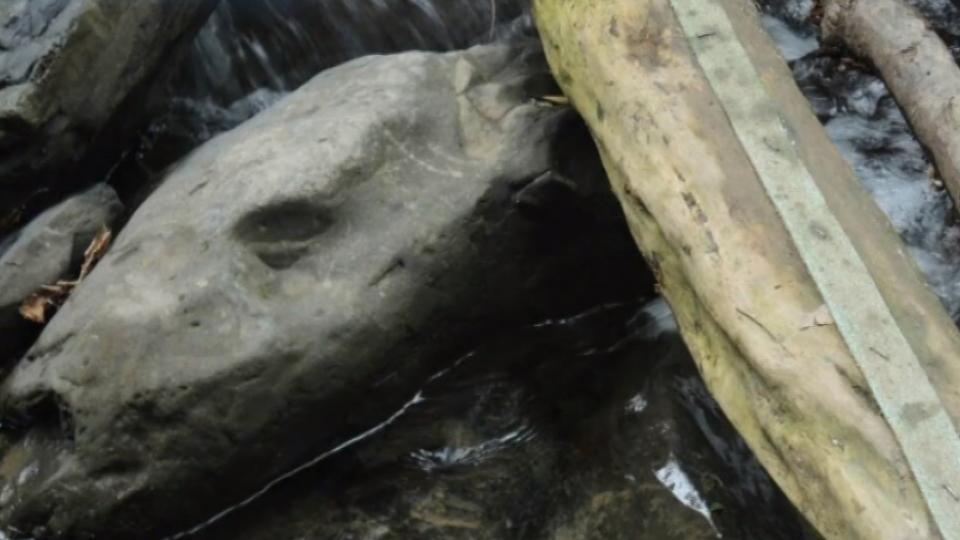 「溪裡有人骨」登山客報案 揭92歲翁分屍案