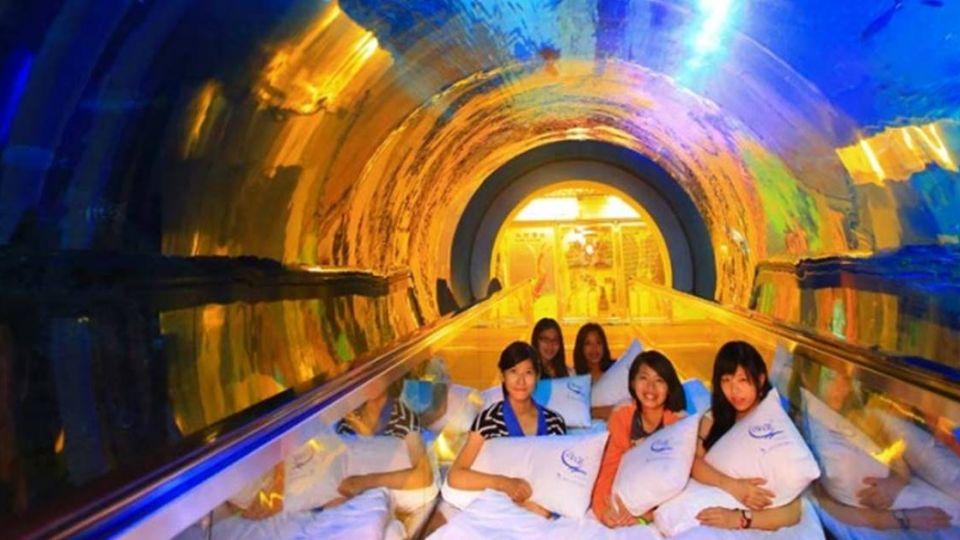 【美麗佳人】《博物館驚魂夜》真實版!8館開放夜宿 與「木乃伊、人骨」共眠