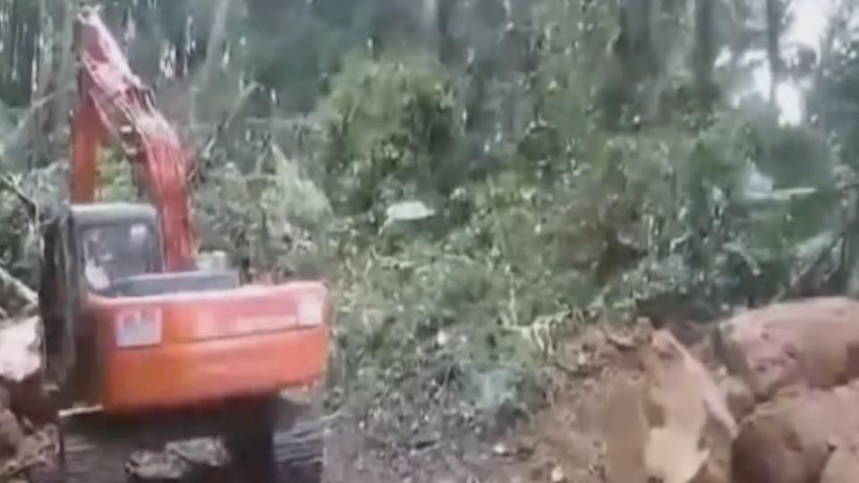 颱風惹禍! 阿里山森林鐵道 邊坡坍方遭阻斷