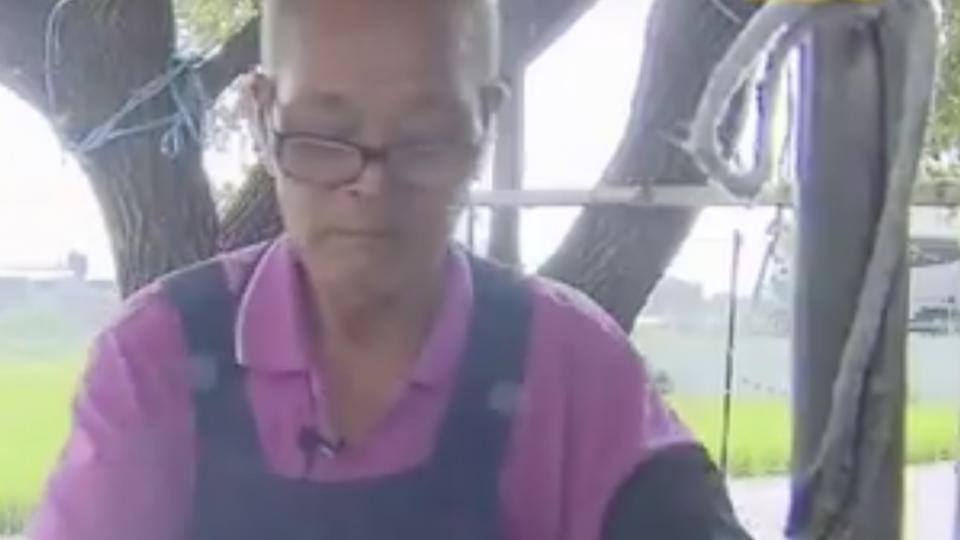飄香40年! 明倫蛋餅創始人 80歲病逝