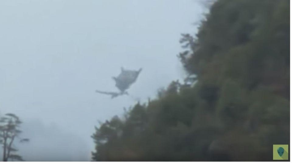 【影片】神祕生物?爬石山…驚見「單翅龍」飛行 網驚:我也遇過