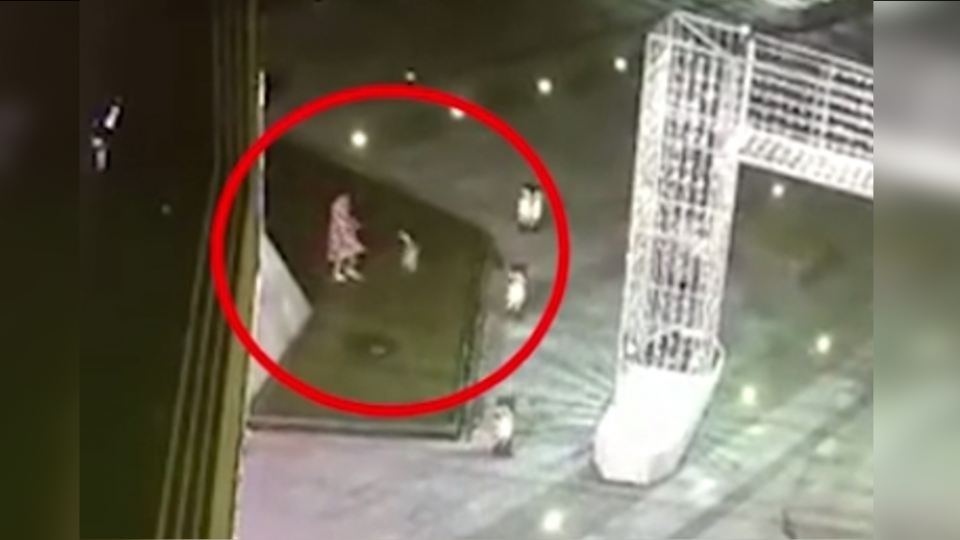 恐怖!9歲女童景觀噴泉遛狗 水孔一噴…觸電倒地亡