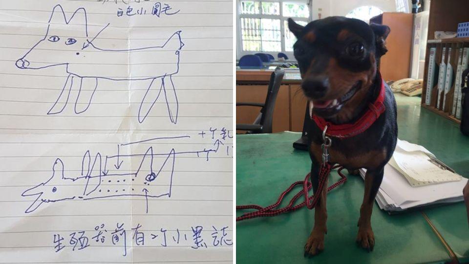 太神啦!愛犬失蹤20天…警靠簡易「手繪圖」1800秒尋回黑皮
