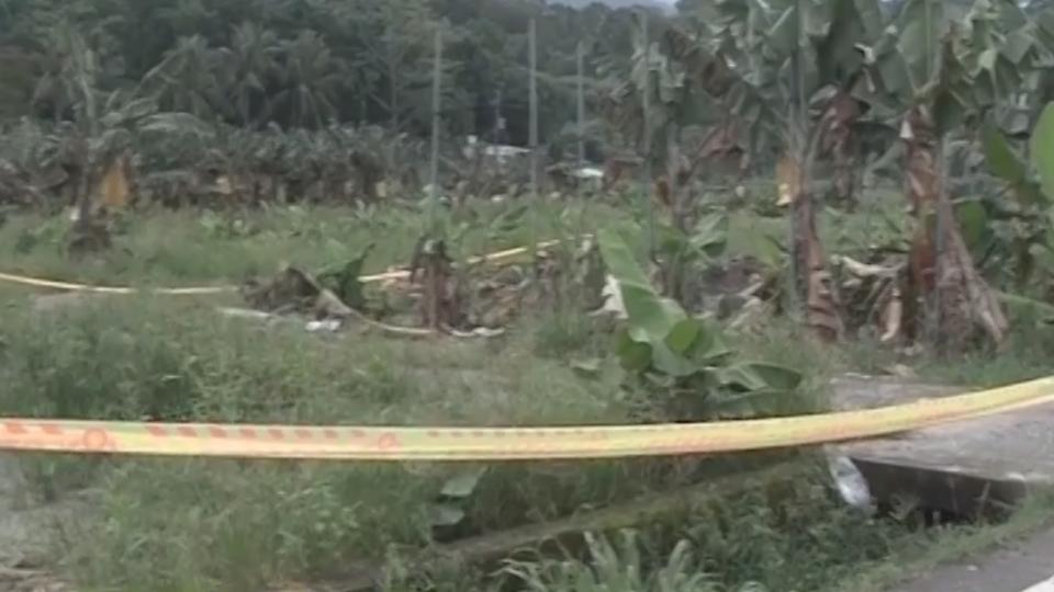 打死偷蕉賊遭起訴 蕉農母無奈:我們自己衝動