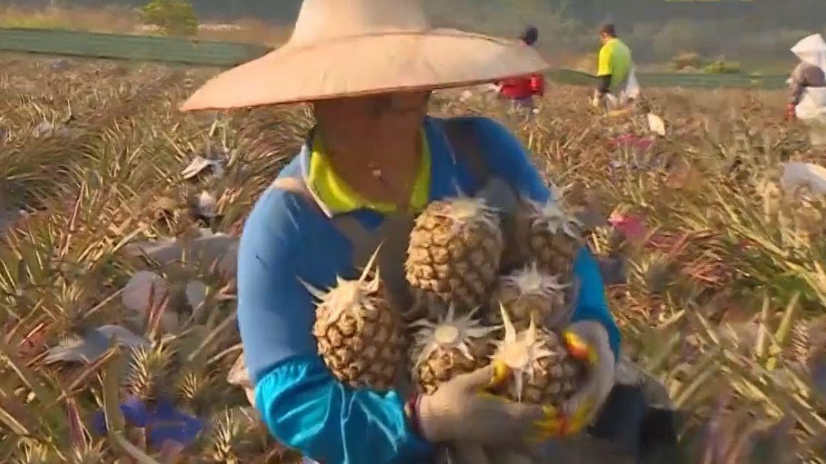 國營企業跟進「新南向」 外銷佈局鎖定東南亞