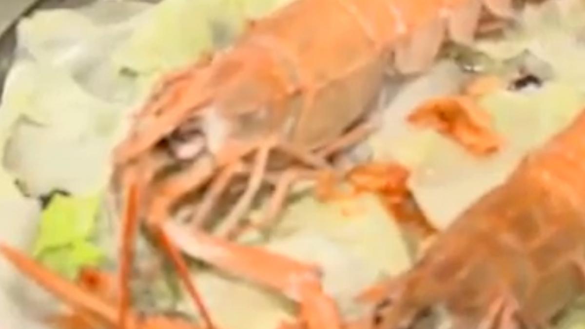 海鮮餐廳也打「無菜單」! 上桌揭曉主菜