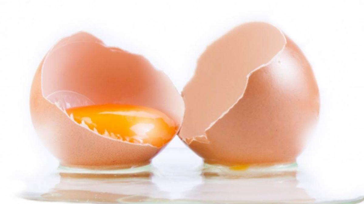 怕膽固醇高…蛋黃蛋白吃哪個好?營養師精闢解析