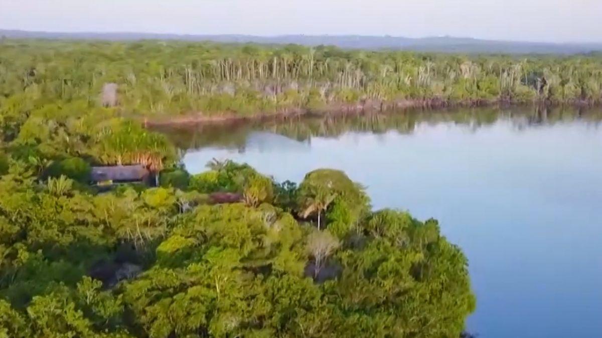勇闖地球禁區 探秘南美亞馬遜雨林