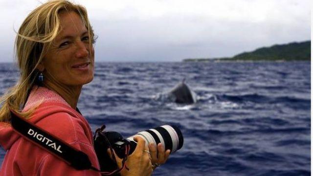 潛水驚遇鯊魚!暖心鯨魚把「她」藏鰭下 霸氣護花送上船