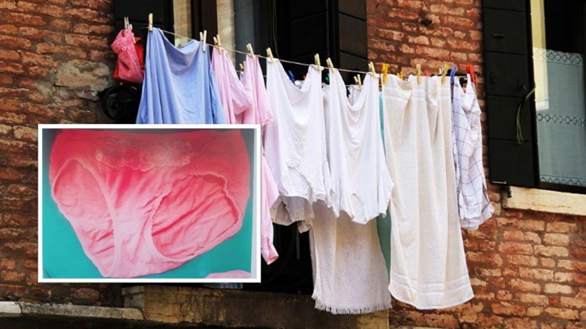 「我媽內褲也偷!」男一夜狂掃25件內褲 家屬:他平常很乖