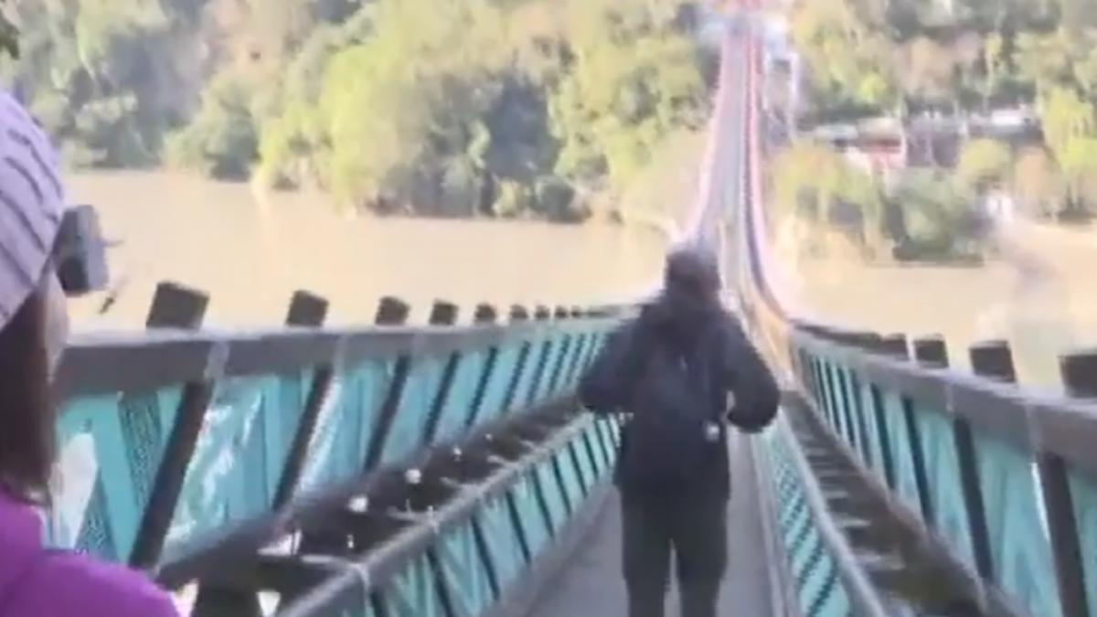 搶朝聖「全台最長吊橋」 接駁、售票民怨不便