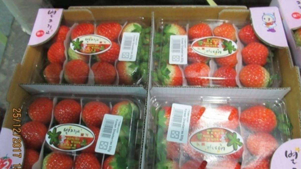 快訊/農藥超標!好市多進口藍莓、草莓 慘遭退運銷毀