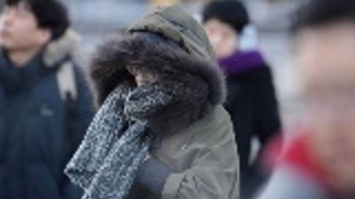 寒潮爆發!全台低溫下探7度 急凍一周才回暖