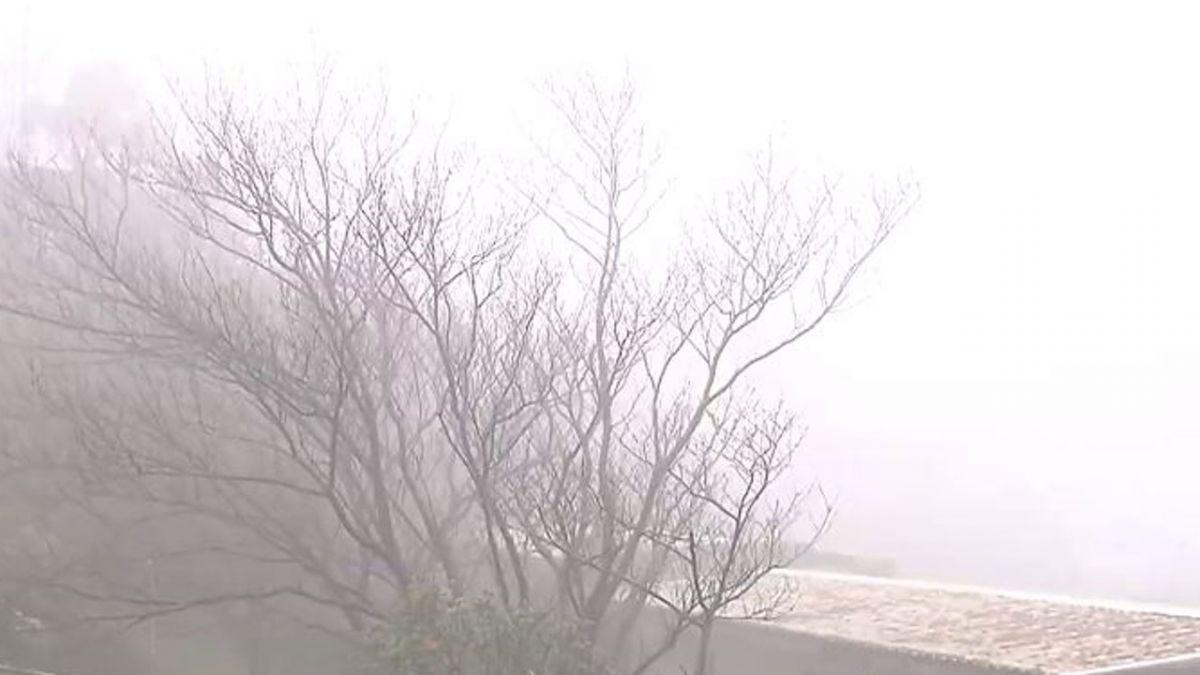 【東森大直播】14年最久寒潮冷5天 陽明山追雪 0730準時開播