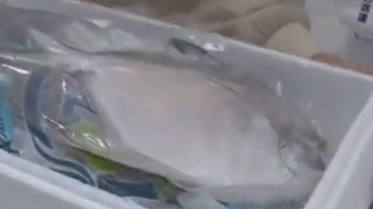2200只賣1500! 漁會、中盤商推低價海鮮禮盒