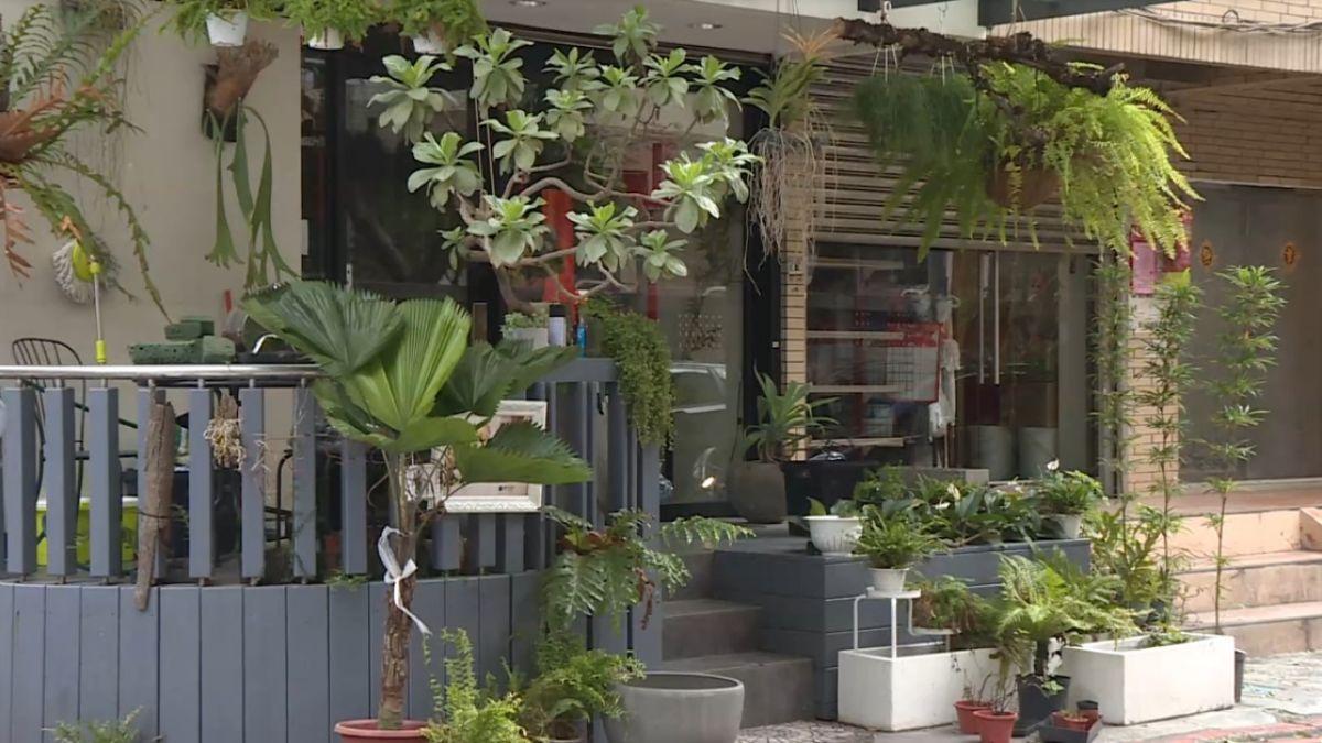 太愛植物!盆栽大盜鋌而走險偷1.2萬石松