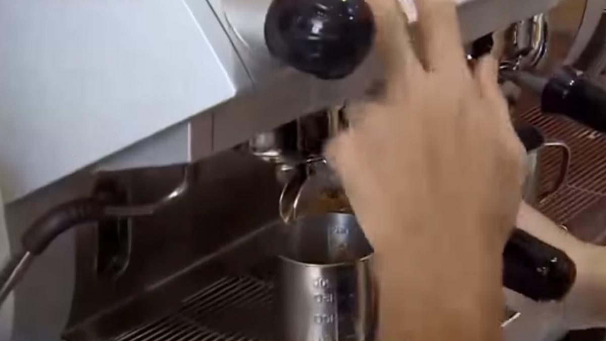 「紅茶拿鐵」是咖啡還是奶茶? 民眾想喝霧煞煞