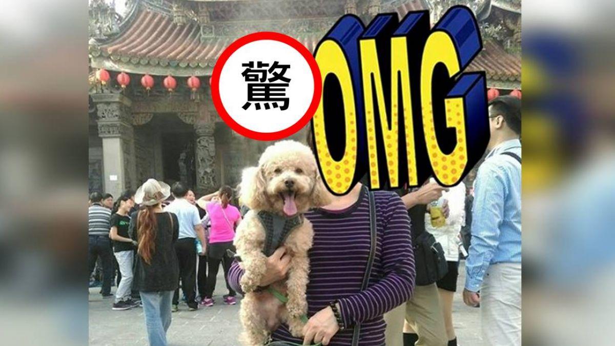 三峽祖師廟前合影 她驚見「狗頭殘影」!網嚇歪:不只1隻