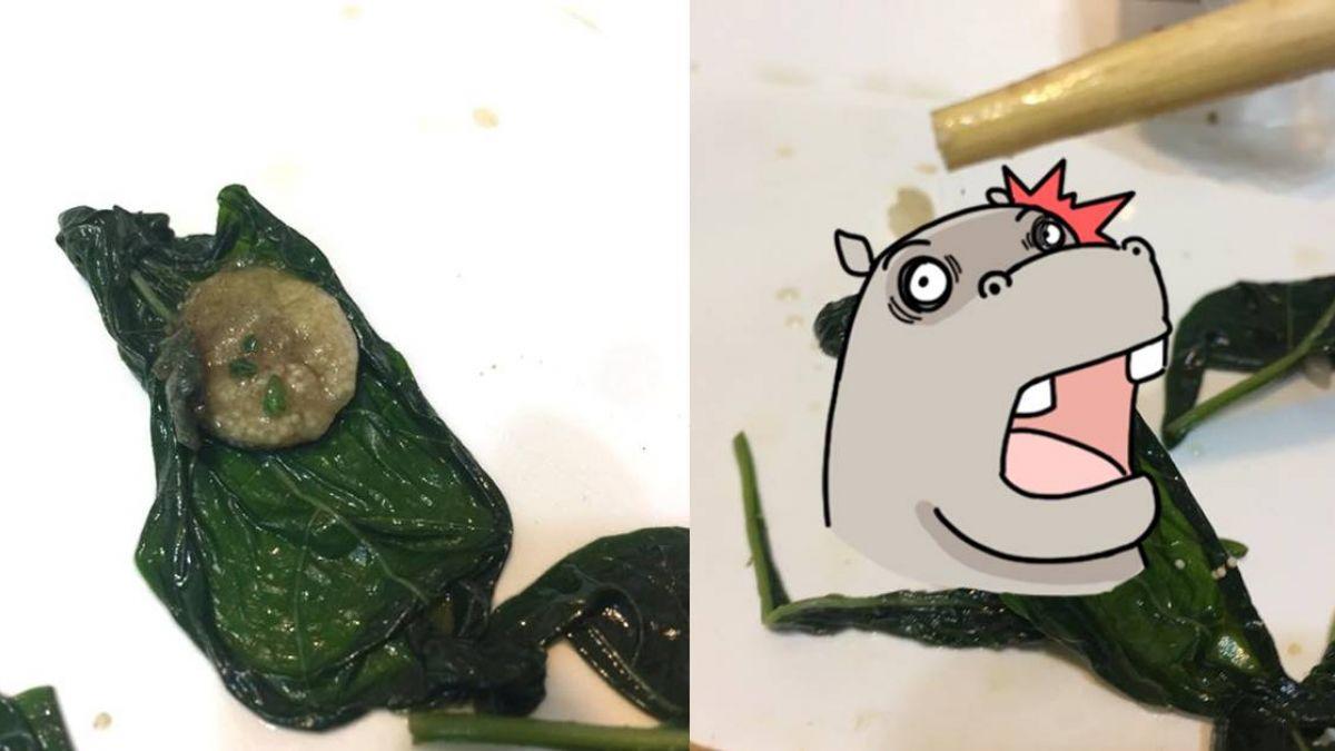 噁!地瓜葉藏整團蜘蛛卵 挑開竟「爆漿」牽絲