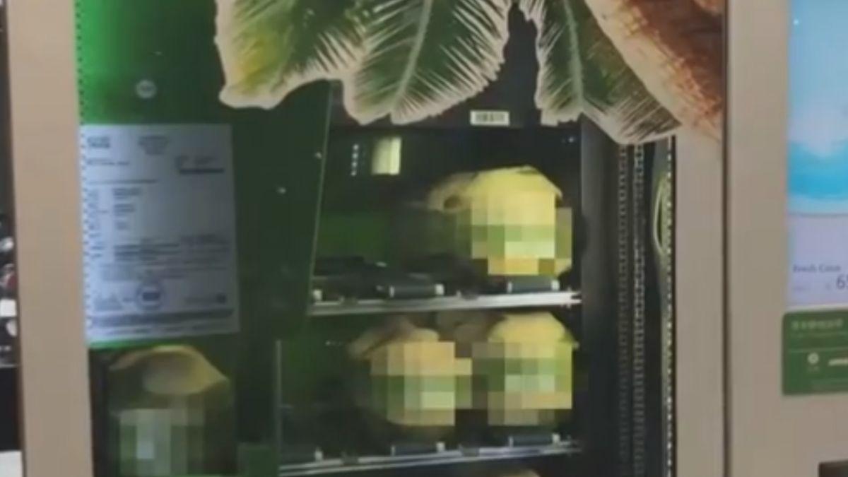 整顆椰子帶著喝 留意「好壞只能靠運氣」