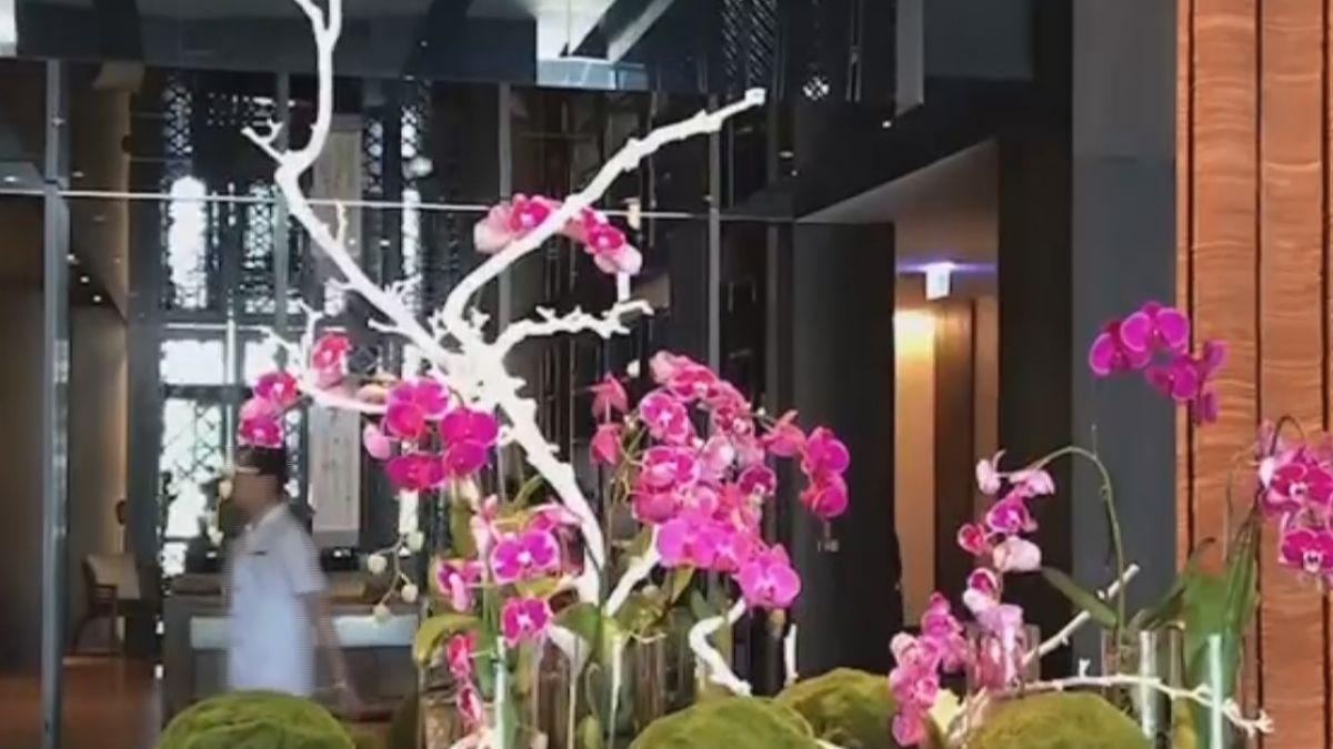 「淡淡」五月天 南市飯店住1晚送1晚 下殺2.5折
