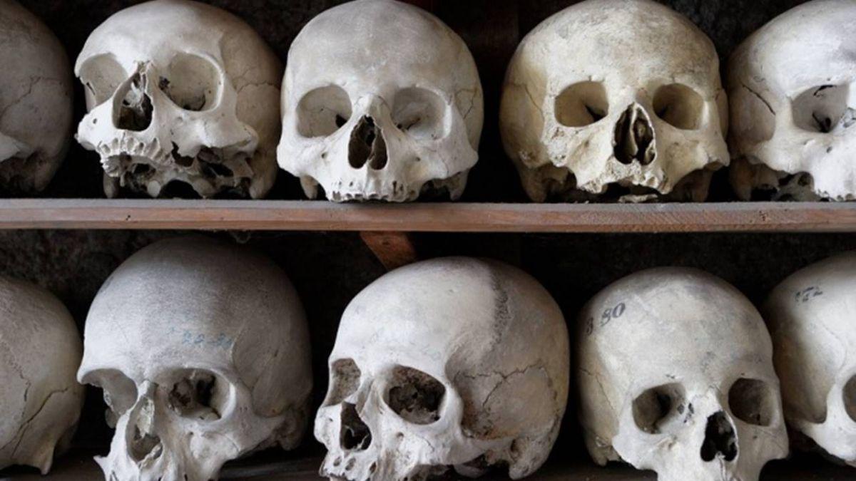 整理高中生物教室…翻出「真人骨頭」!一查死亡超過半世紀
