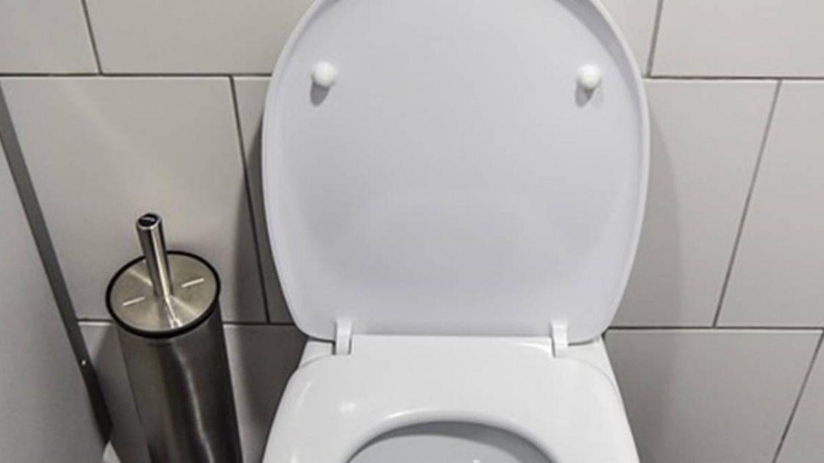 上廁所玩手機易猝死!這7個器官受損 全身恐壞光