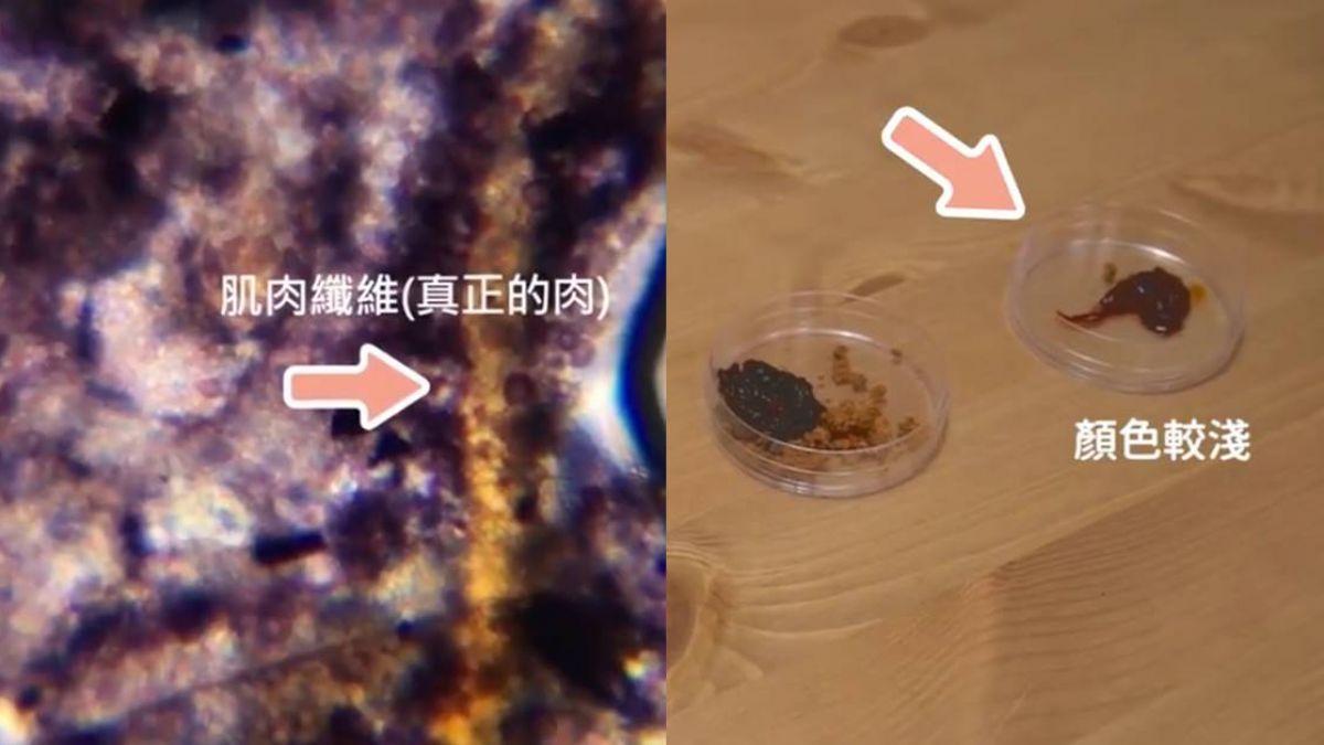 這批最純!碘液解析肉鬆成分 實測結果讓人驚呆
