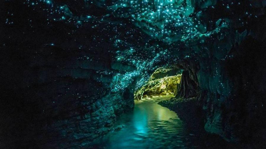 世界第九大奇蹟 紐西蘭地下魔幻洞府 螢火蟲星光 彷彿置身銀河裡