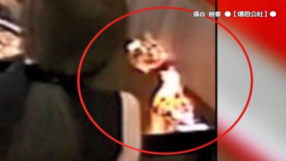 不滅火還狂笑!情侶看衛生紙火球燒牆 店家怒:當燭光晚餐?