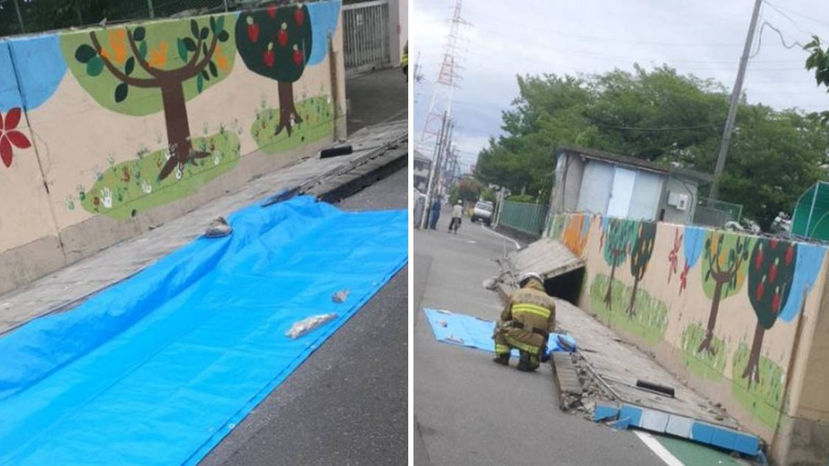 大阪6.1地震 9歲女遭塌牆壓死!民眾憂:周期又到了