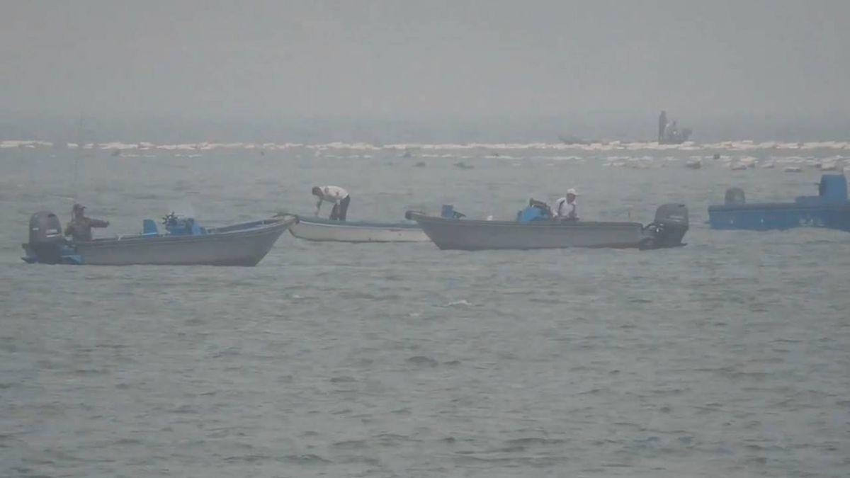 12艘陸漁船成排闖金門海域 不見海巡驅離