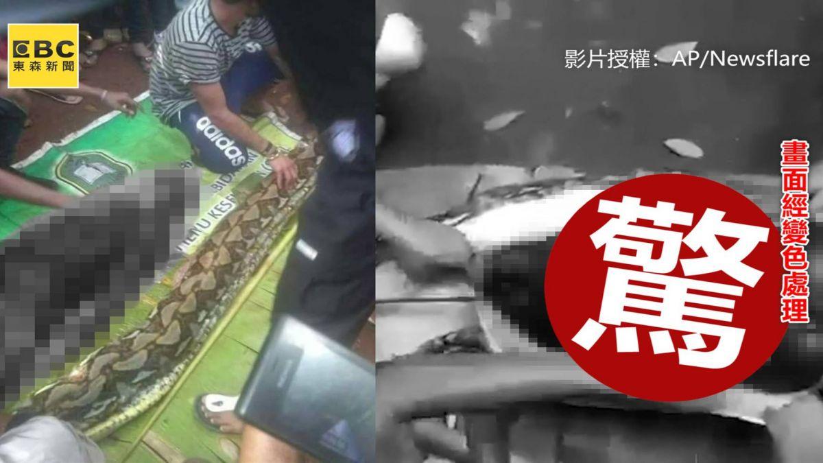 悚!婦人遭7公尺蟒蛇活吞 剖肚驚見黏液屍嚇哭村民
