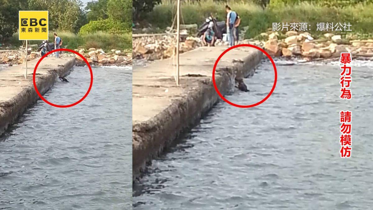 狠心男鐵鍊綁狗丟進海中 追問後回答「除跳蚤」引撻伐